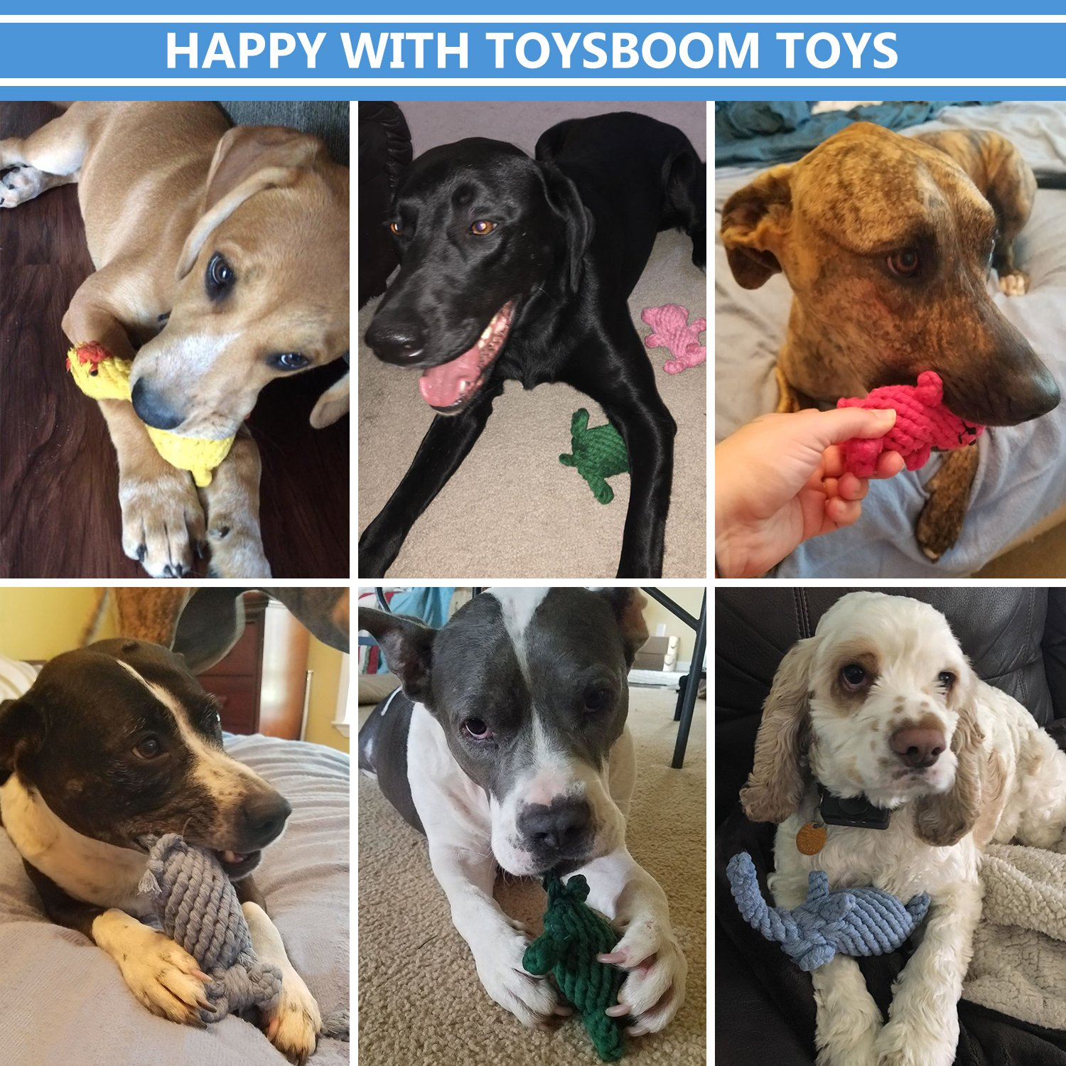 Dog Rope Toys Cute Animals Design, Cotton Puppy Toys for Small Dogs. Rope Dog Toy Set pack of 6 by TOYSBOOM (Image #6)