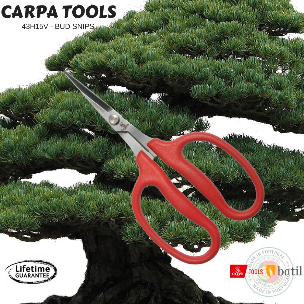 Carpa Horticultural Snips With Stainless Steel Blades - Large Polymer Handles - Ideal Garden Scissors - Great Bud Snips, Hydroponic Snips, Bonsai Trimming, Floral Snips - Made In Portugal