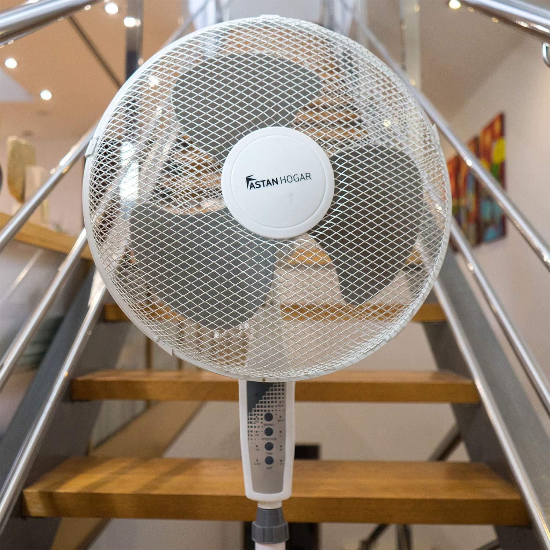 Astan Hogar Ventilador de Pie Capri con Mando a Distancia y Temporizador Faan AH-AF20020, Gris: Amazon.es: Hogar