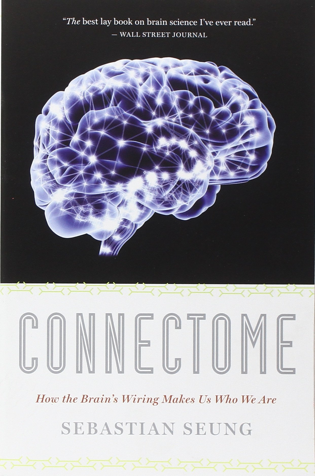 Buy Connectome How The Brains Wiring Makes Us Who We Are Book Observation Room Online At Low Prices In India