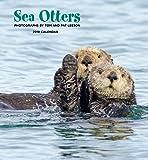 Sea Otters 2019 Calendar