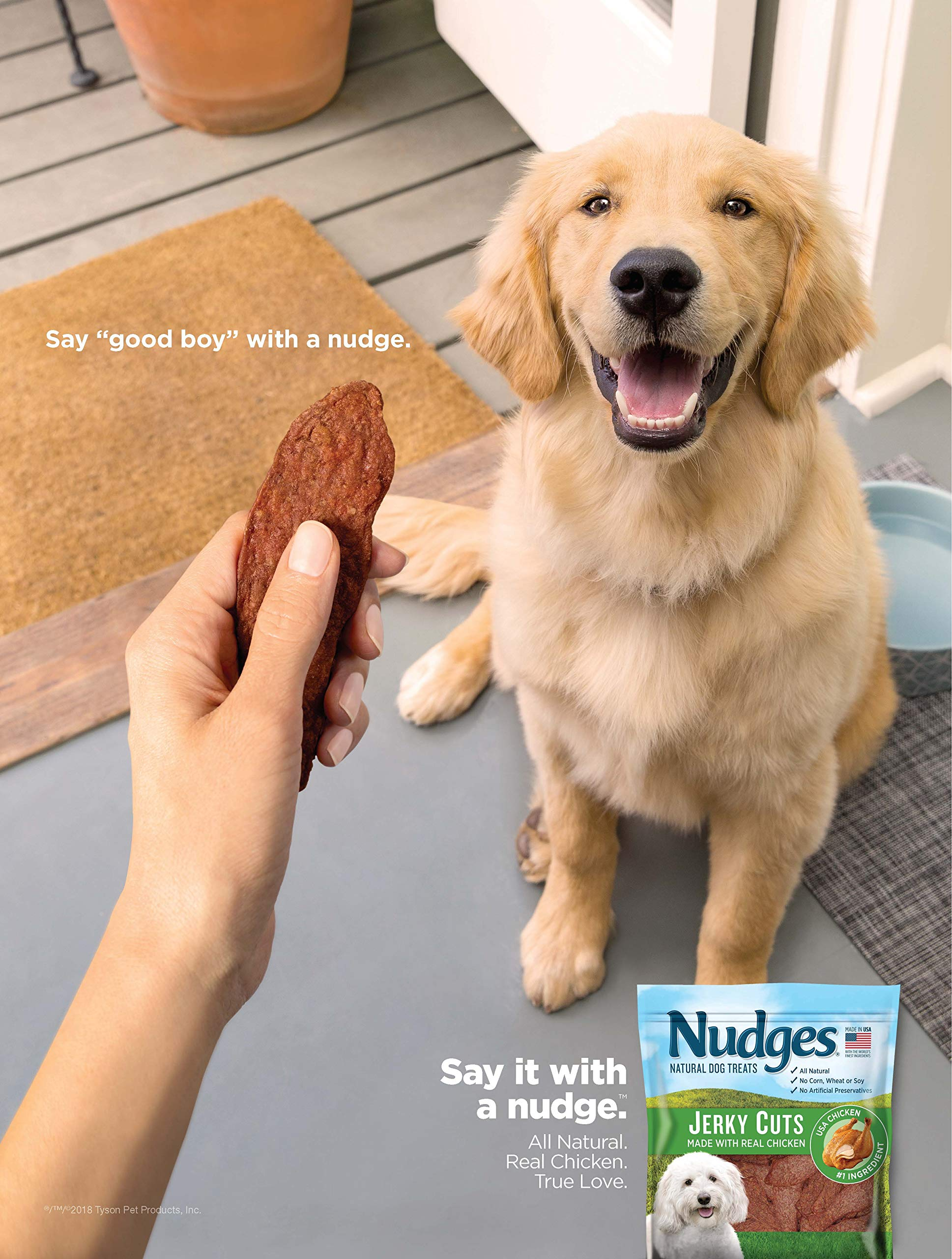 Nudges Chicken Grillers Dog Treats, 18 oz