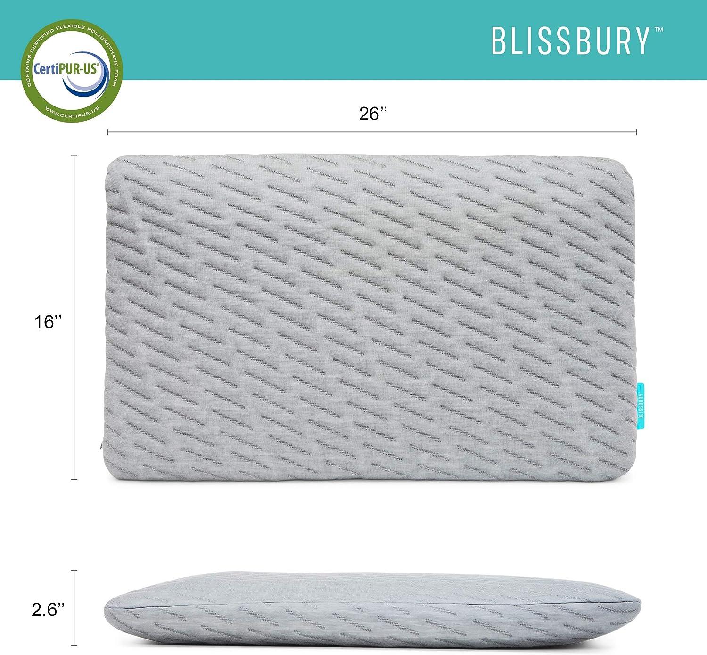 BLISSBURY Thin Flat Stomach Sleeping Pillow Cooling Memory Foam