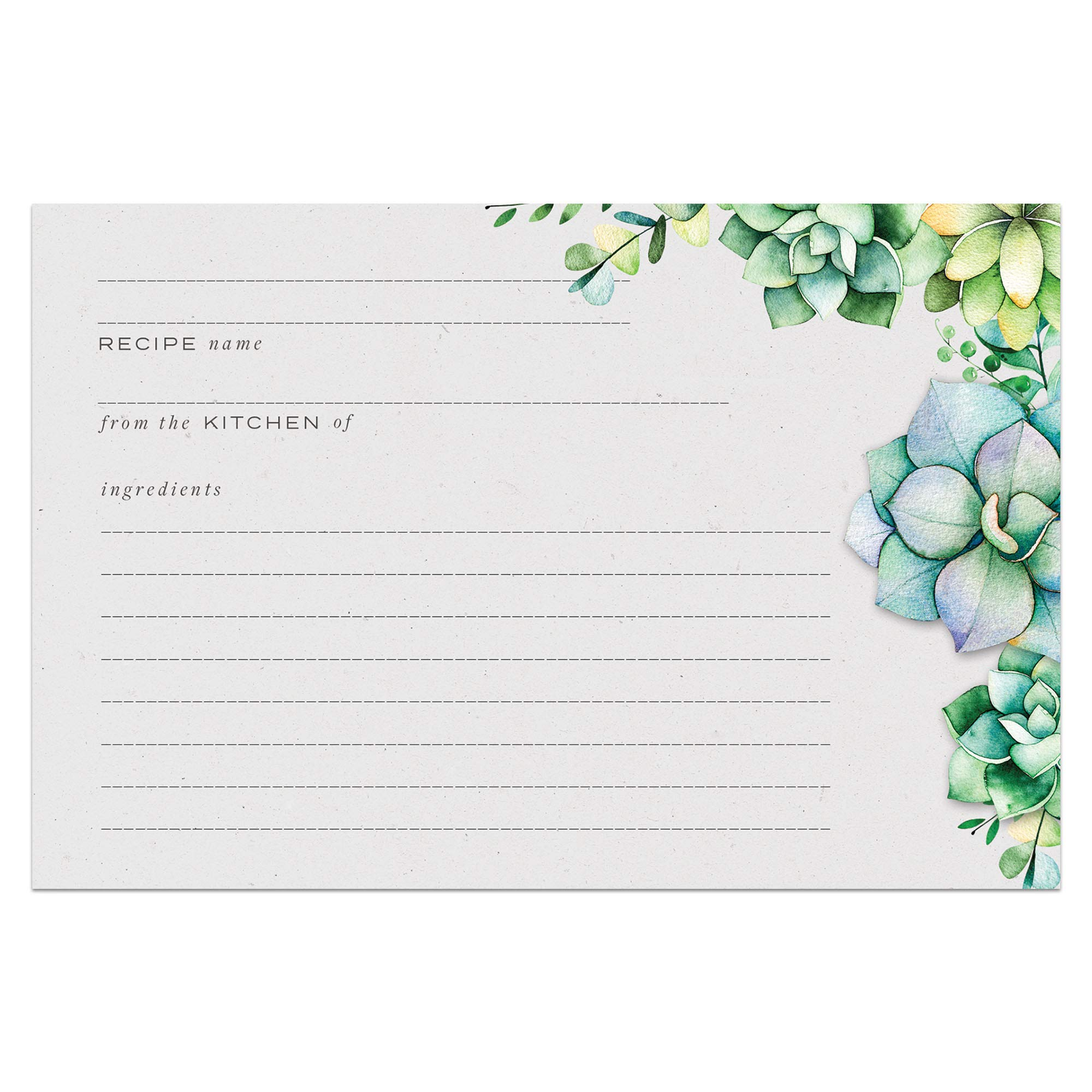 48 Succulents Recipe Cards, 4x6 in, Water Resistant by Dashleigh