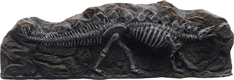Marina Stegosaurus Fossil Ornament for Aquarium