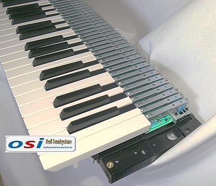 Fatar - Teclado para órgano (61 teclas, para gran órgano, aplicaciones MIDI,