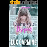 Damaged Dropout (Dropout Series Book 2)