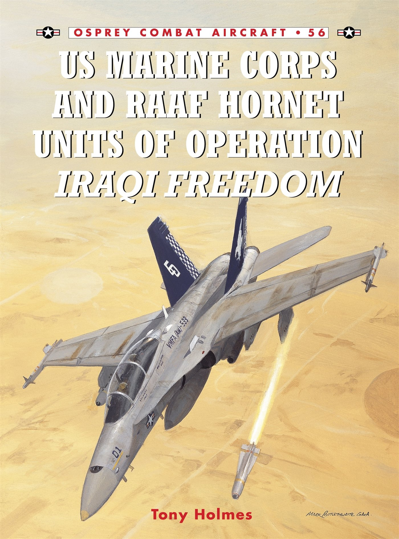 US Marine Corps And RAAF Hornet Units Of Operation Iraqi Freedom  Combat Aircraft Band 56