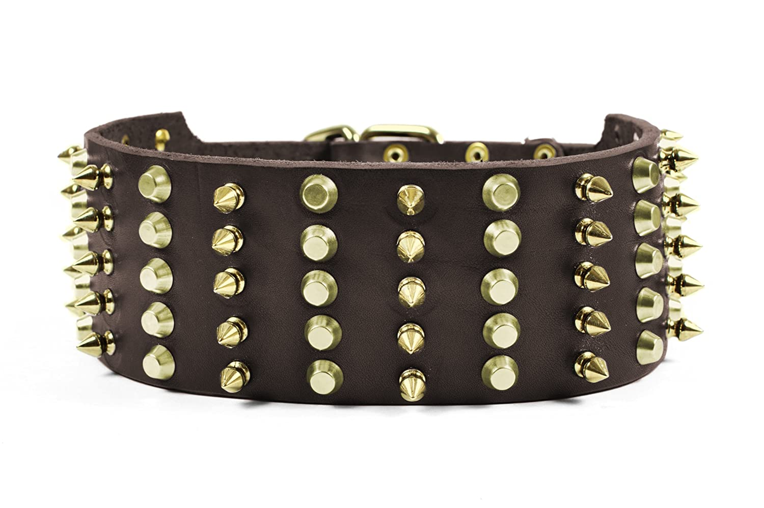 Dean & Tyler Wide Heaven Dog Collar with Brass Spikes Studs Buckle, 20 by 2-3 4-Inch, Brown