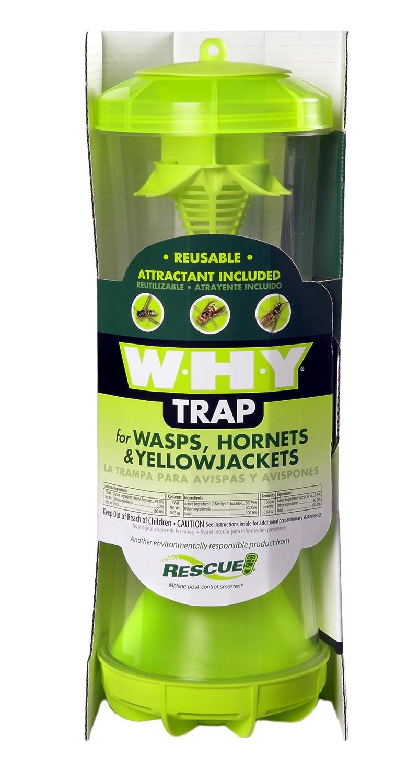 Amazon.com : RESCUE! WHYTR Non-Toxic Reusable Trap for Wasps ...