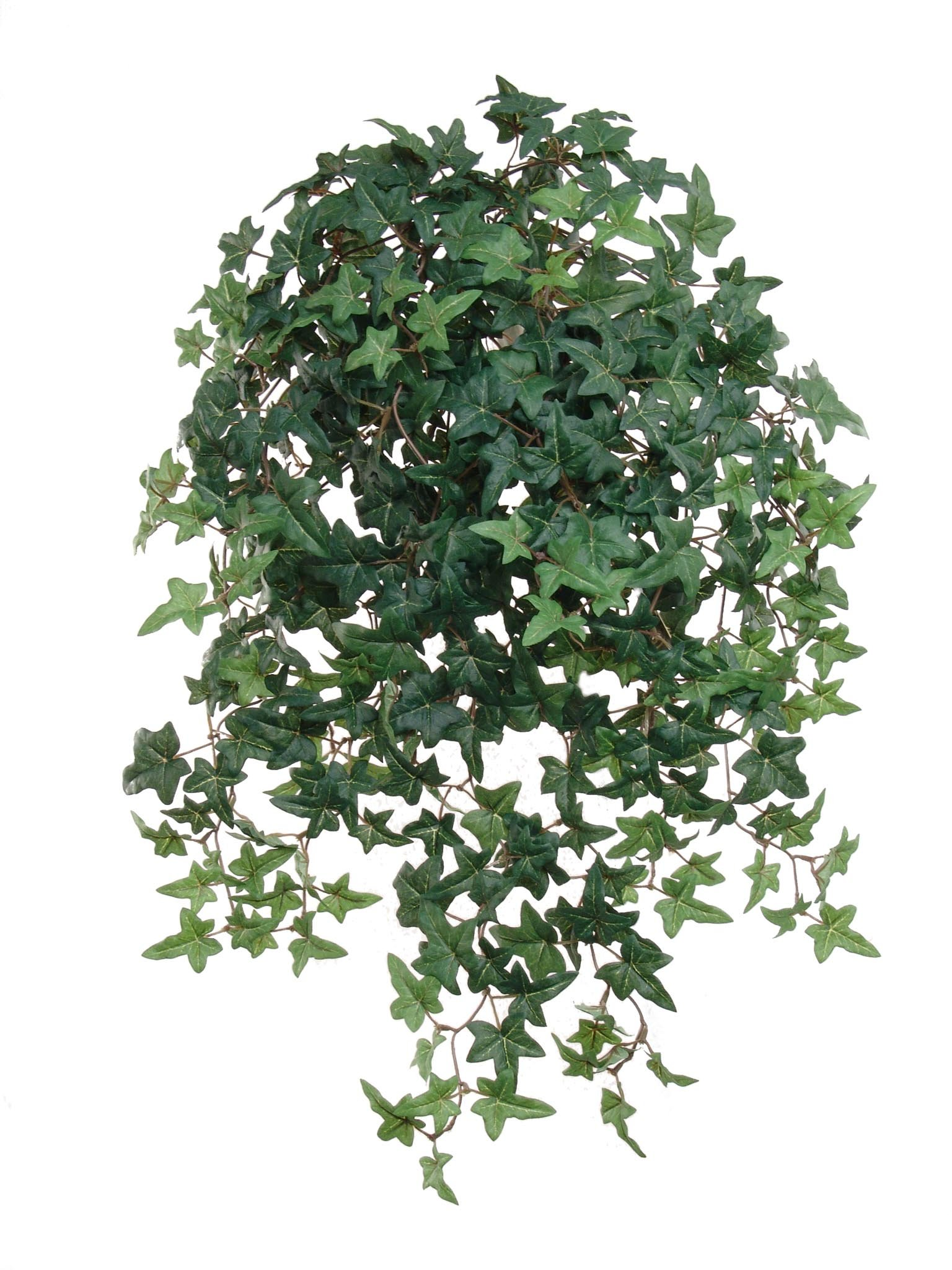 Hanford-design-Larksilk-265-Artificial-English-Ivy-Plant-Small-Artificial-Plants-with-Silk-Greenery-Faux-Ivy-Vines-Artificial-Ivy-Plant-with-450-Fake-Ivy-Leaves