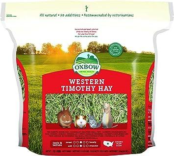 oxbow western timothy hay 40 ounce bag amazon ca pet supplies