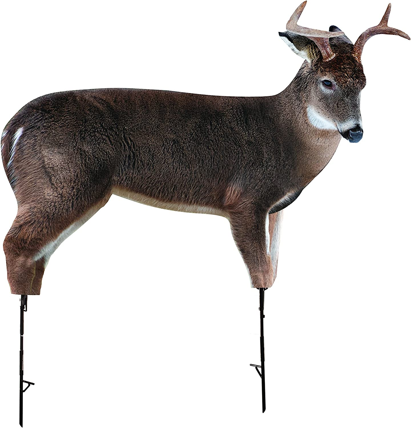 The Freshman (Whitetail Buck) by Montana Decoy