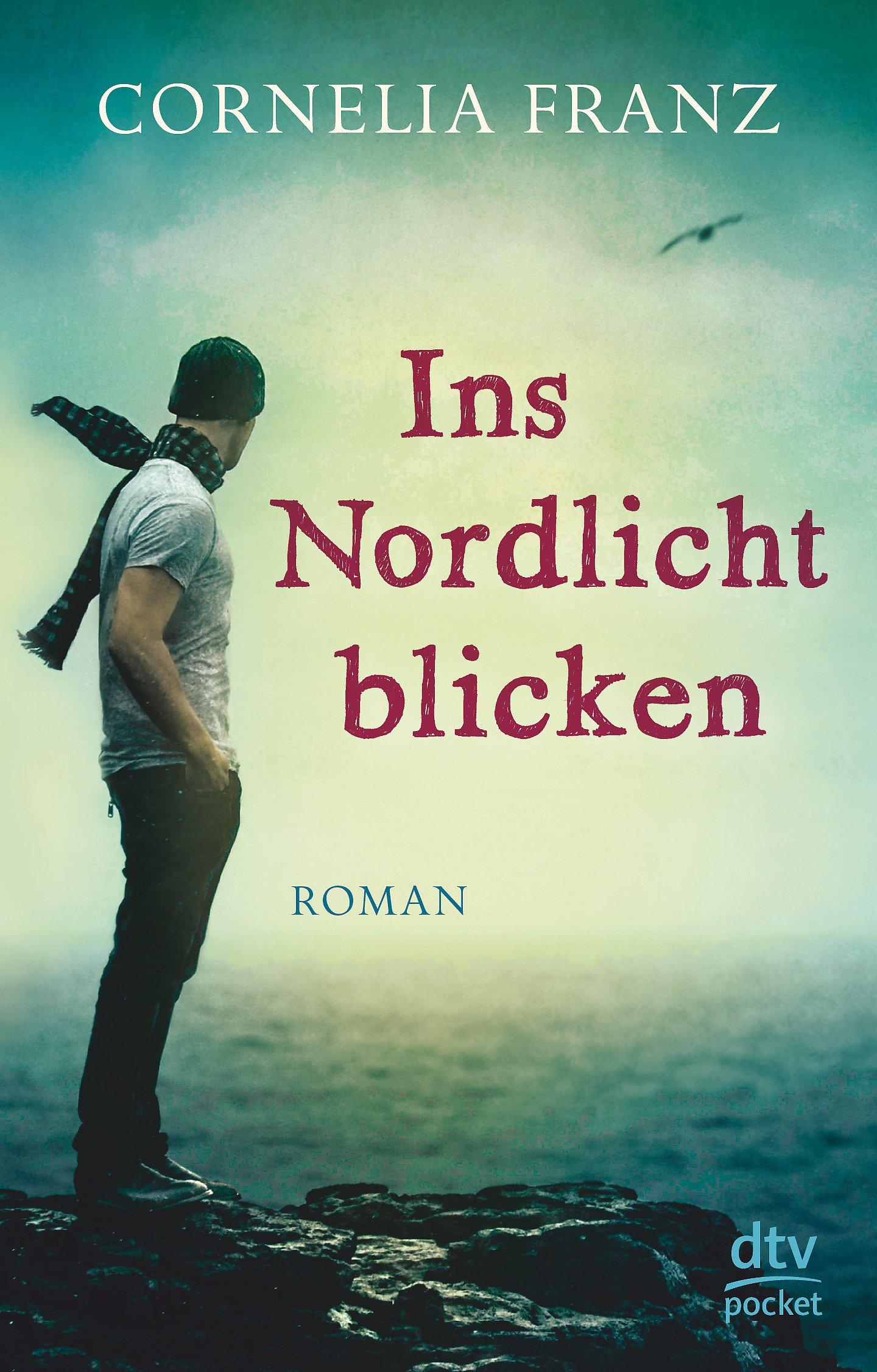 Ins Nordlicht blicken: Roman