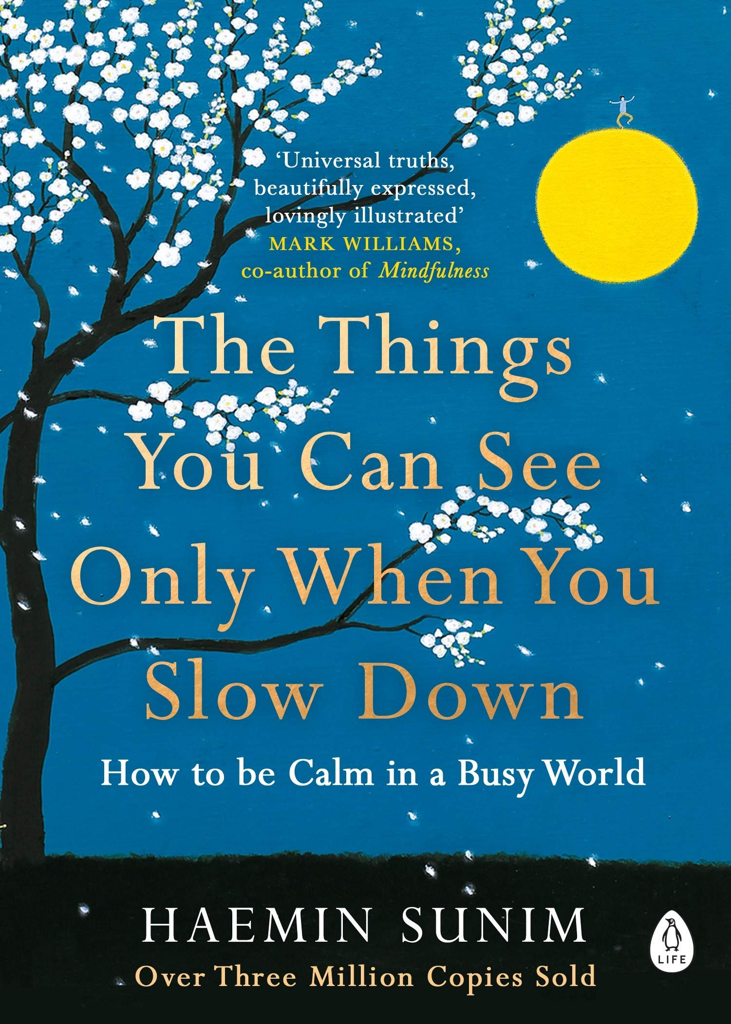 The Things You Can See Only When You Slow Down | Book