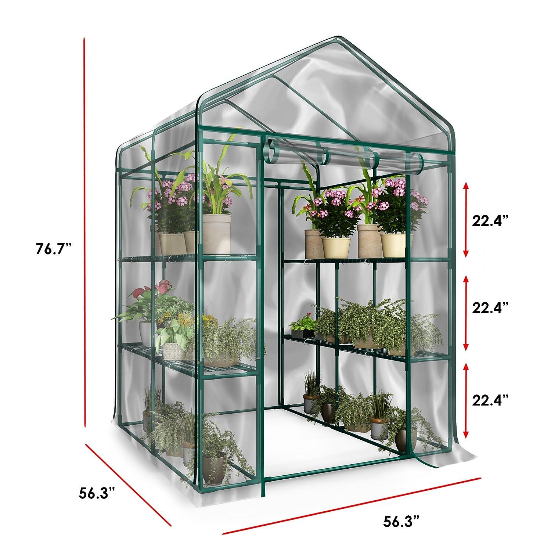 Amazon.com: Invernadero ambulante grande para plantas con ...