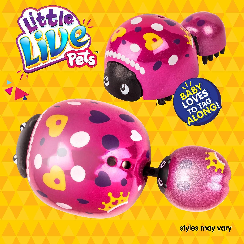 Little Live Pets 5 Ladybug Pack