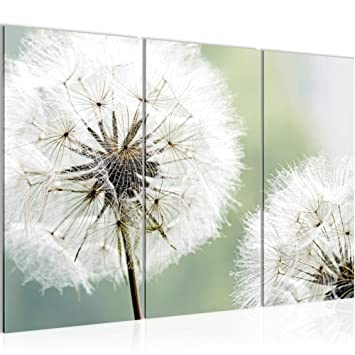 Amazon.de: Bilder Blumen Pusteblume Wandbild 120 x 80 cm Vlies ...