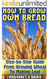 How To Grow Own Bread: Step-by-Step Guide From Growing Wheat To Making Loaf