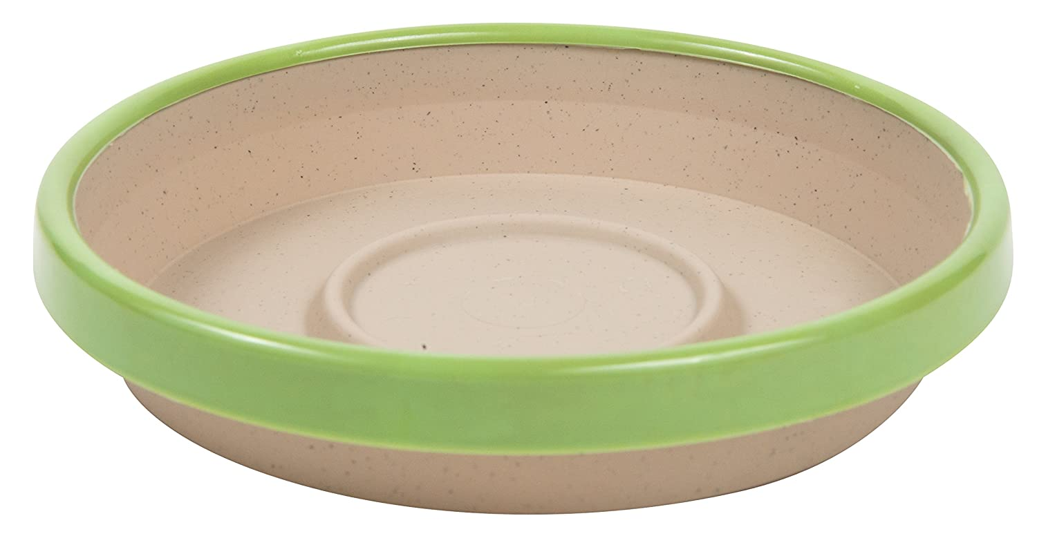 Bloem Twotone Planter Tray Saucer, 8
