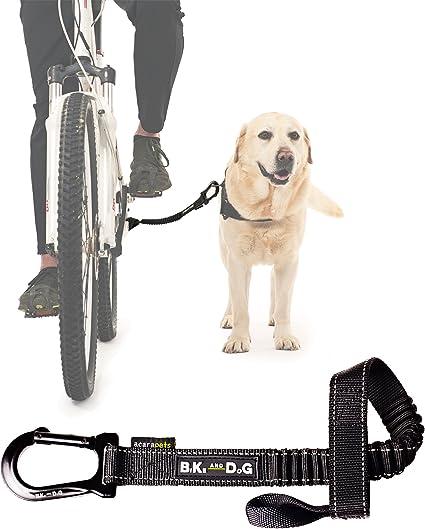 BIKE AND DOG Correa Llevar a uno o más Perros con una Bicicleta ...