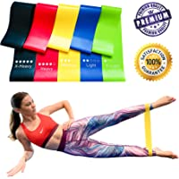 Resistance Bands Set Fitness Equipment Rubber Band Pull Band Exercise & Fitness Band for Legs, Gym Equipment Elastic Bands for Workout Equipment Elastic Band Exercise Equipment Bag and Manual 5PCS/SET