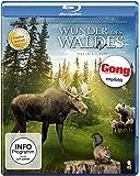 Wunder des Waldes - Tales of a Forest (Prädikat: Wertvoll) [Blu-ray]