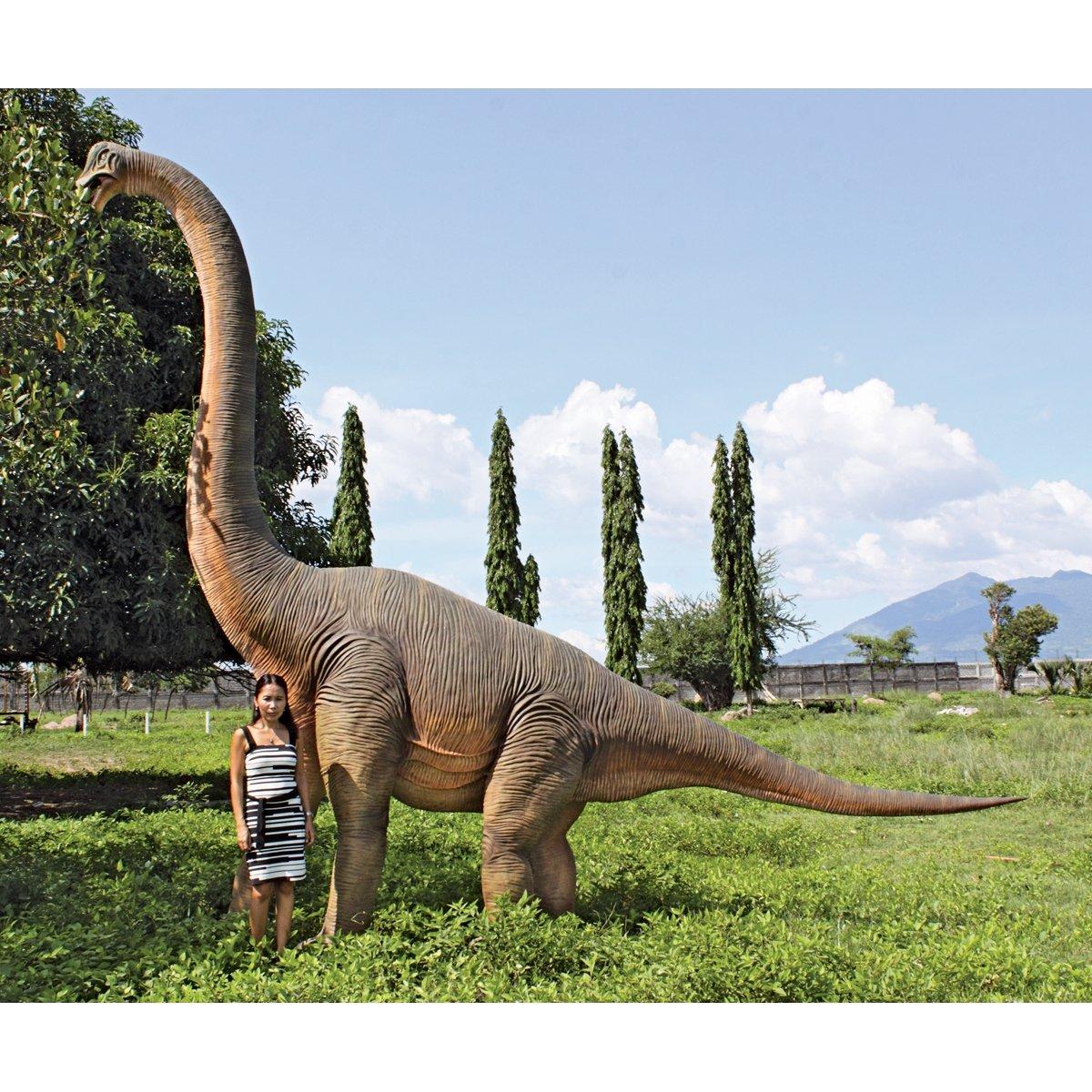 Amazon.com : Design Toscano NE100055 Jurassic Sized Brachiosaurus Dinosaur  Statue : Patio, Lawn U0026 Garden
