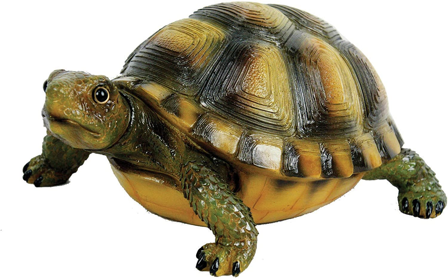 Desert Turtle by Michael Carr Designs - Outdoor Turtle Figurine for gardens, patios and lawns (80061)