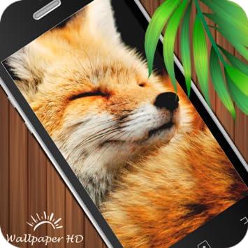 Amazoncom Fox Wallpaper Hd Appstore Para Android