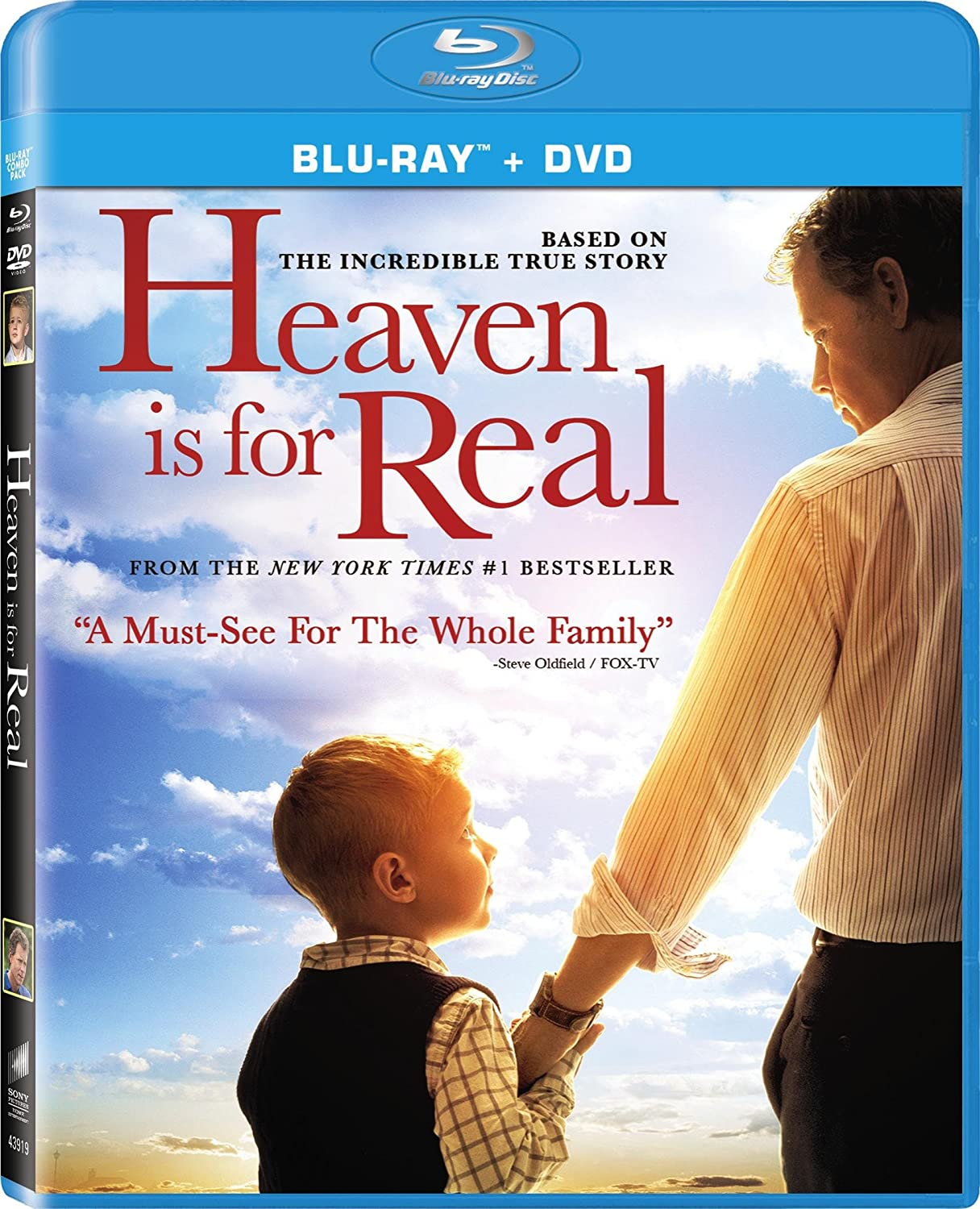 Heaven Is for Real (2014) BDRip 720p 800MB [Hindi – English] ESubs MKV