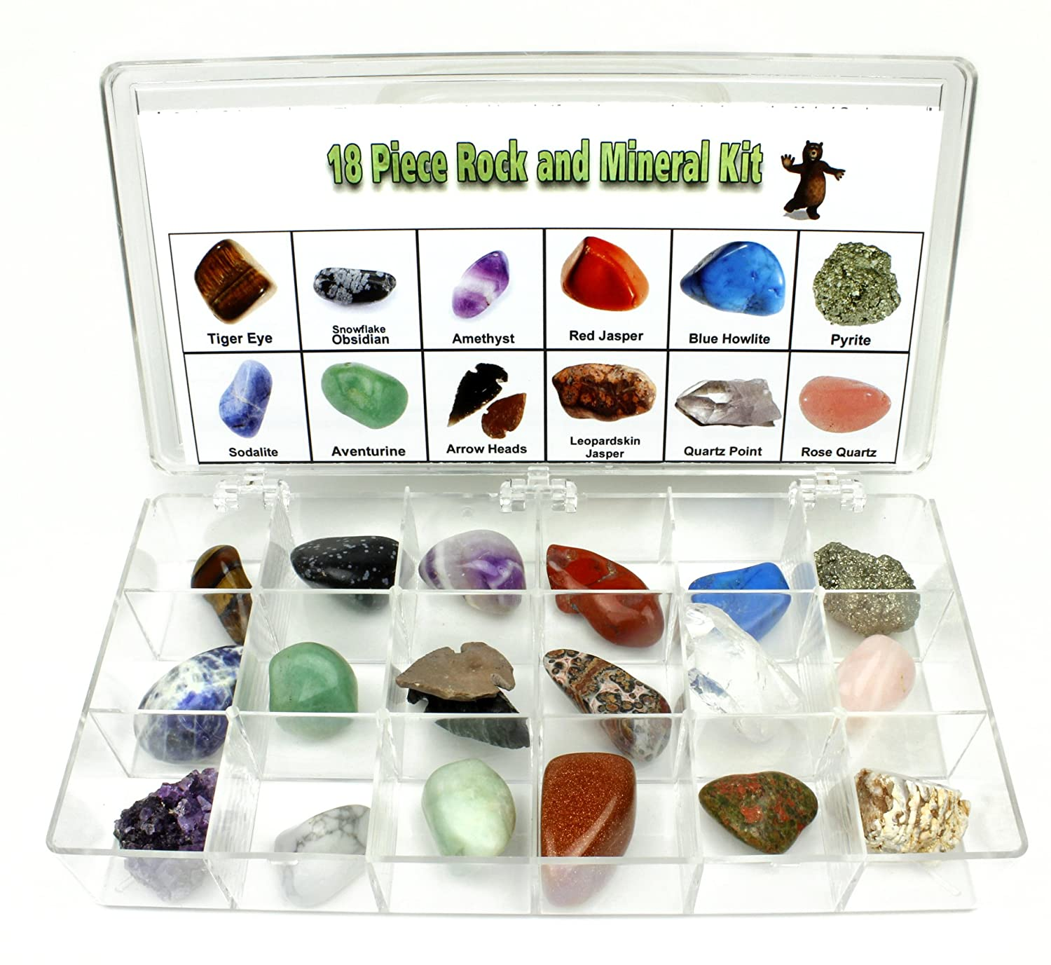 Rock and Mineral Educational Collection in Collection Box -18 Pieces with description sheet and educational information. Limited Edition, Geology Gem Kit for Kids in a Display Case, Dancing Bear brand