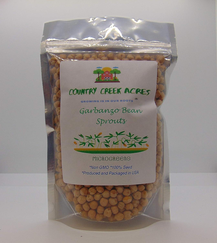 Garden /& Sprout Seeds More 1 Lbs Organic Garbanzo Sprouting Seeds Grow Garbanso Sprouts Gardening