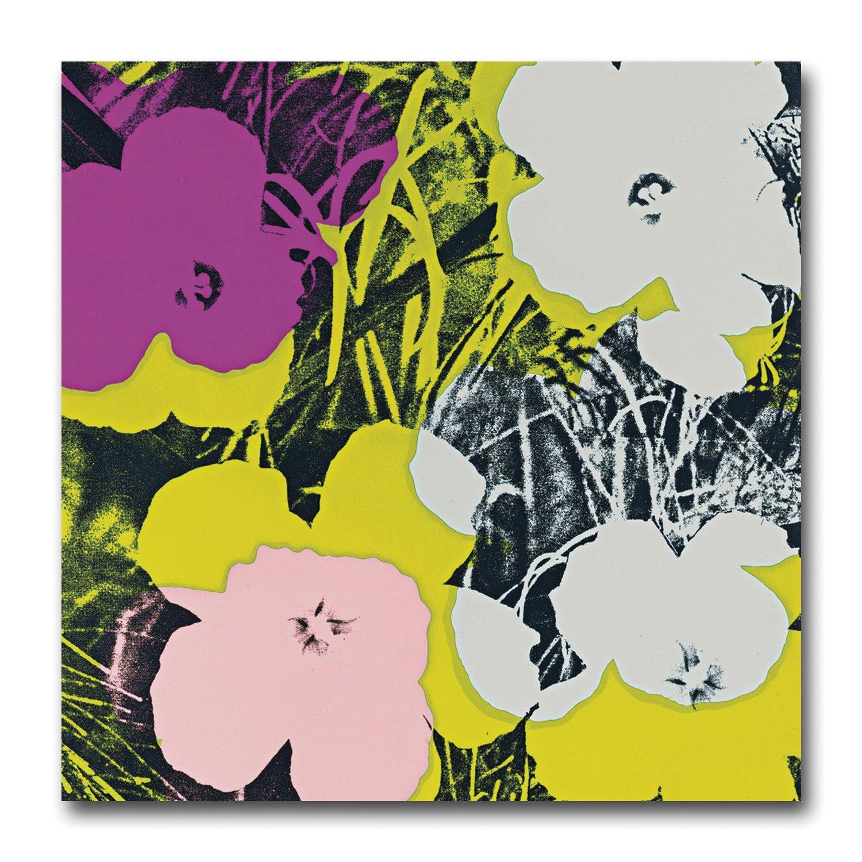 30cm x 30cm - Andy Warhol Flowers 64 Canvas Art Print. Retro Funky ...
