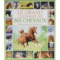 Le grand Calendrier des 365 chevaux 2019