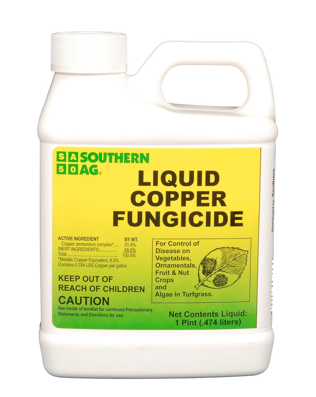 Amazon.com : Southern Ag Liquid Copper Fungicide, 16oz - 1 Pint ...