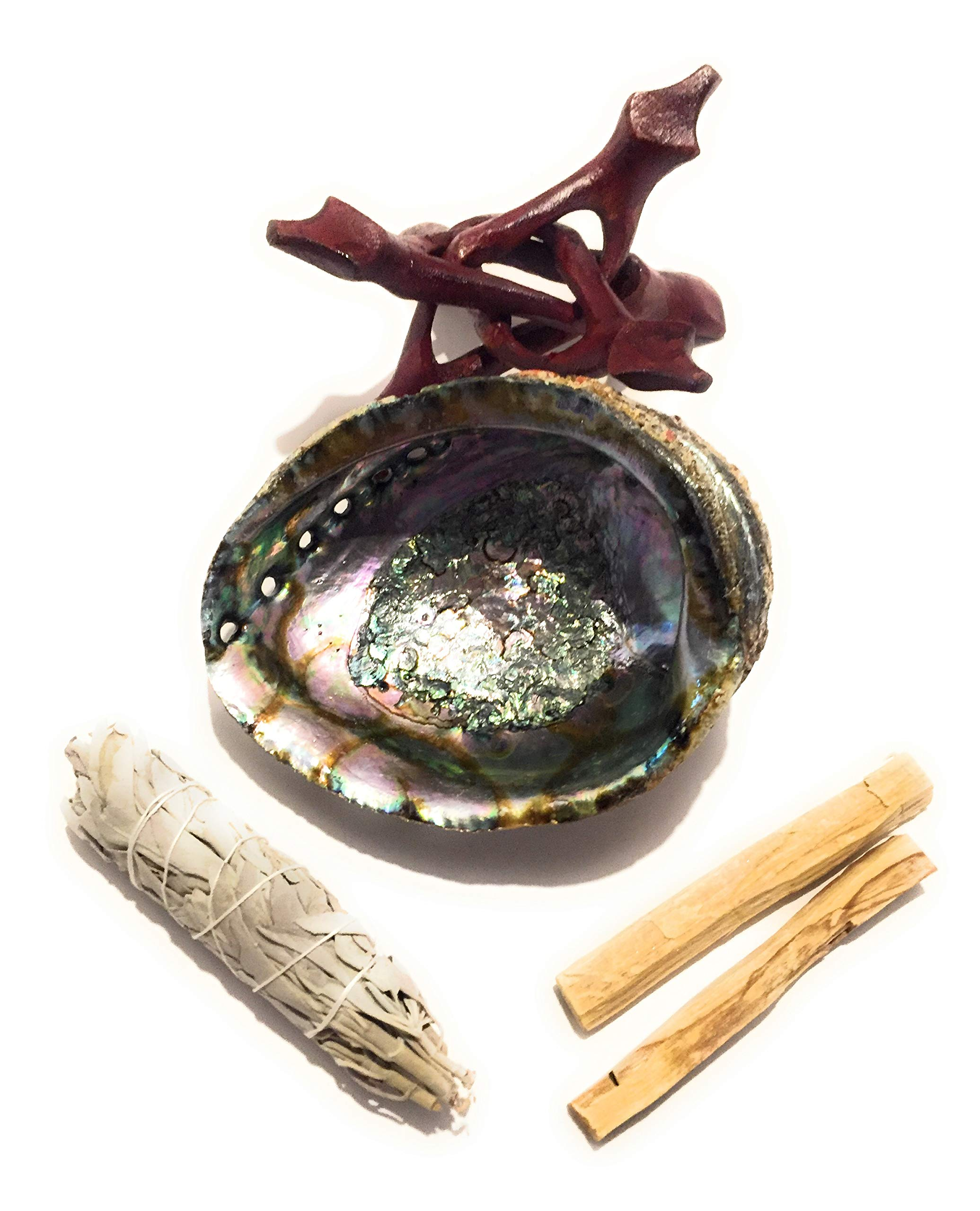Arianna Willow Smudging Kit Premium Hand Picked Abalone Shell White Sage and Palo Santo Sticks