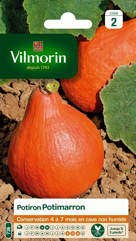 Vilmorin 3486845 Pack de Graines Potiron Potimarron