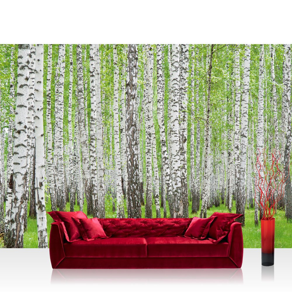 Vlies Fototapete 350x245 cm PREMIUM PLUS Wand Foto Tapete Wand Bild Vliestapete - Wald Tapete Birke Wald Bäume Natur grün weiß - no. 433