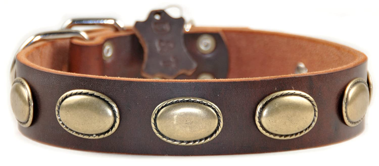 Dean and Tyler RETRO RULZ , Leather Dog Collar with Brass Oval Hardware Brown Size 24-Inch by 1-1 2-Inch Fits Neck 22-Inch to 26-Inch