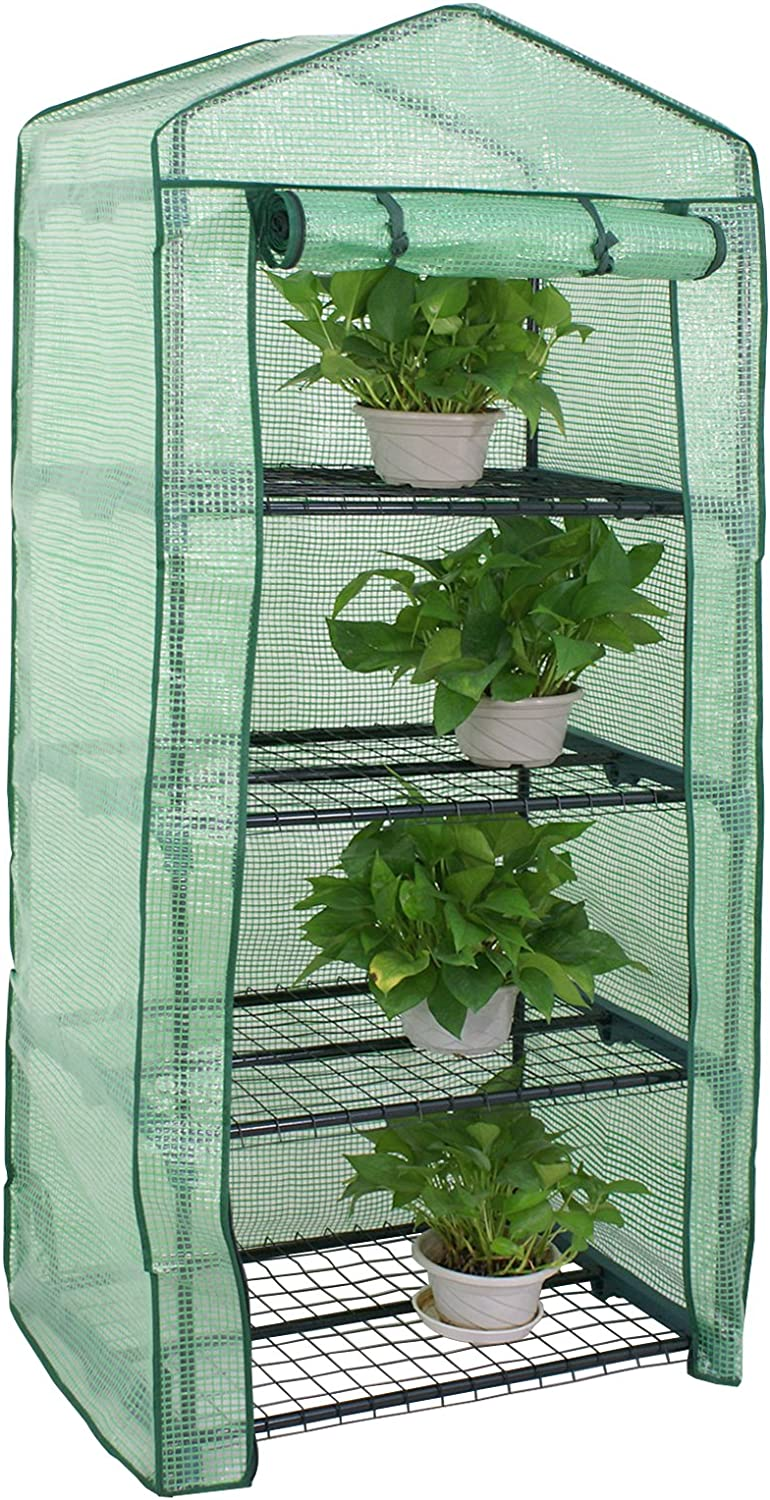 Mini Greenhouse 4 Tier Indoor Outdoor with PE Cover and Roll-Up Zipper Door, Portable Waterproof Cloth Greenhouse Tent Grow Seeds & Seedlings, 27.25L X 19W x 63H Inches,