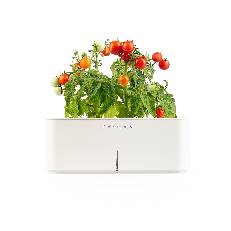 Click & Grow Smartpot Innen Anbau-Set Mini-Tomaten