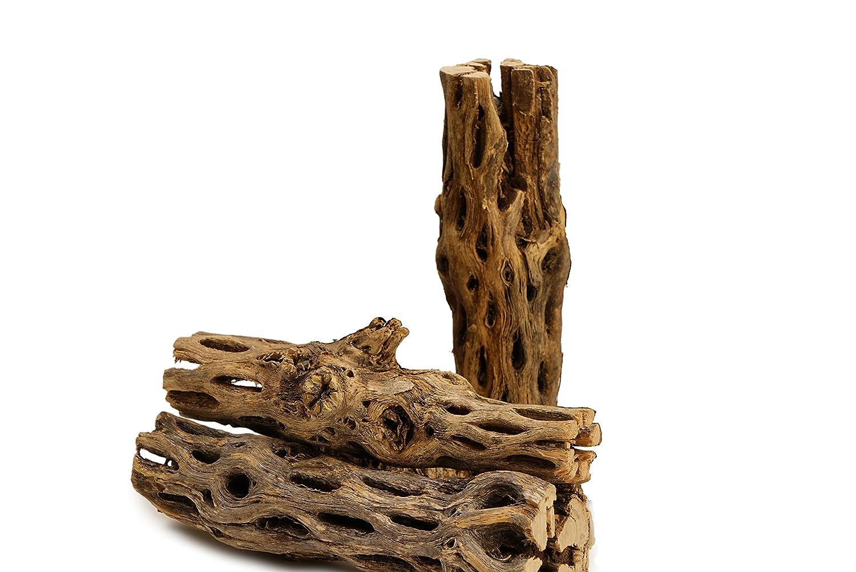 NApremium Natural Cholla Wood 3 Pieces of 13cm 15cm Long Natural Cholla Wood for Aquarium Decoration, Hermit Crabs, Shrimp