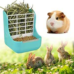 Rabbit Hay Feeder, Bunny Feeder Rabbit Guinea Pig Hay Feeder 2 in 1 Hay Food for Guinea Pig Bunny Rabbit Food Hay Feeder Small Animals Food Hay Feeder (Bule)