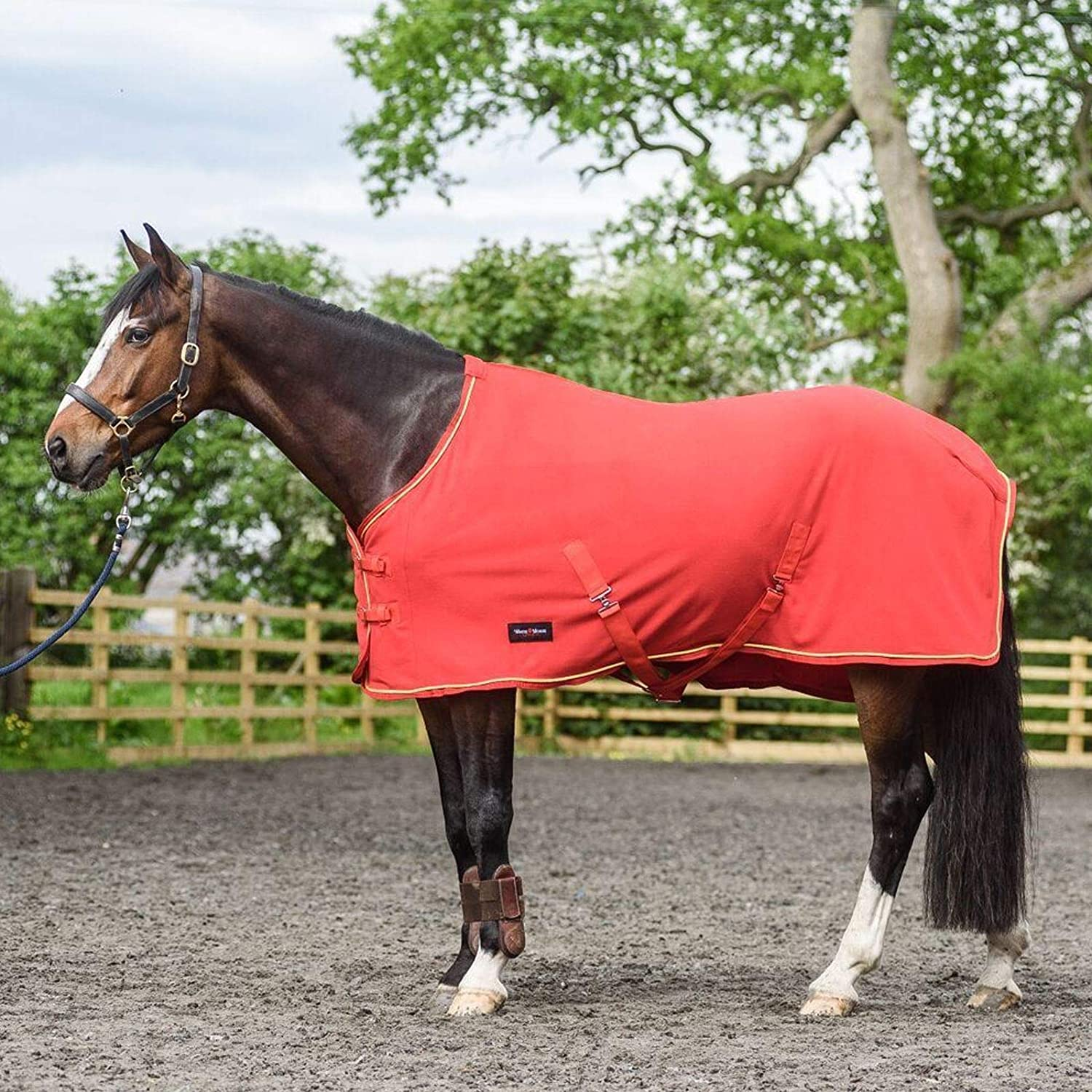 White Horse Equestrian Dash Fleece Rug Horse Pony Stable Field Cooler Showing