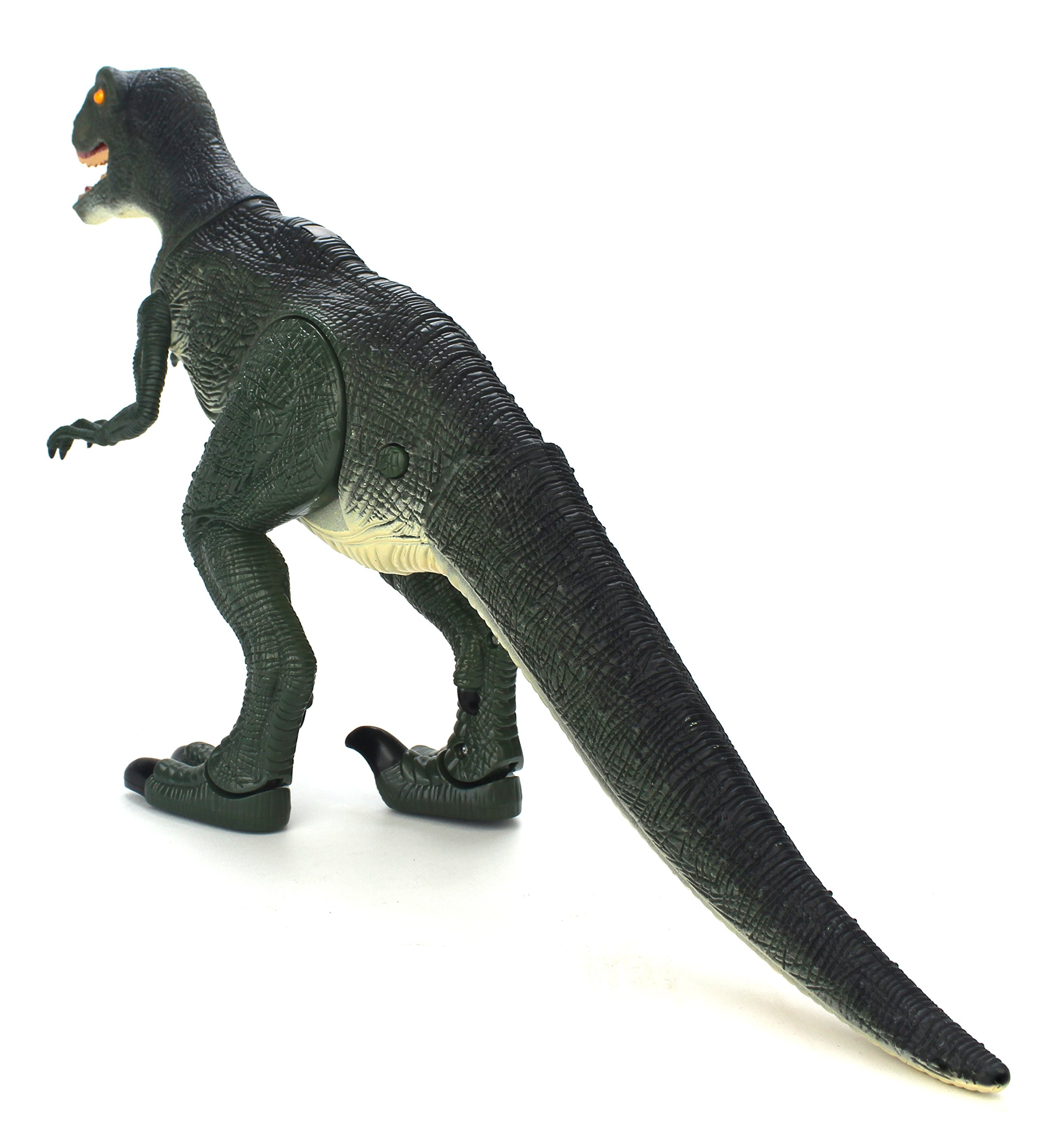 Dinosaur Planet Raptor Remote Controlled RC Battery Operated Toy Velociraptor Figure w/Shaking Head, Walking Movement, Light Up Eyes & Sounds by Velocity Toys (Image #4)
