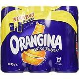 Orangina Pack de 6 Canettes de 33 cl - Lot de 2