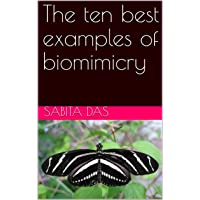 The ten best examples of biomimicry (1)