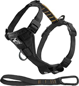 Kurgo Tru-Fir Smart Harness, Dog Harness, Pet Walking Harness, Quick Release Buckles, Front D-Ring for No Pull Training, Includes Dog Seat Belt Tether, For Small, Medium, & Large Dogs