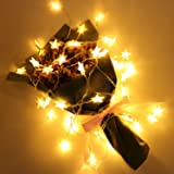 Shayson Battery Operated Indoor Decoration Fairy Lights 6 Meters 50pcs Led Stars String Festoon Party Lighting Warm White for Patio Christmas Wedding Bedroom Outdoor Indoor Princess Castle Play Tents